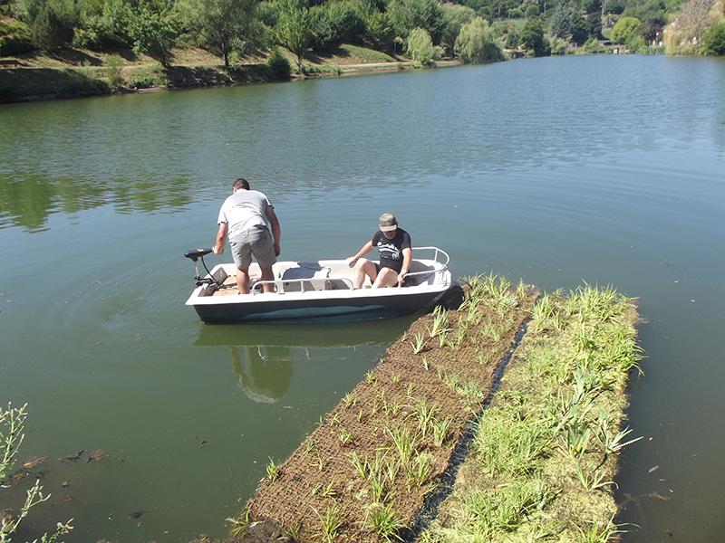 Îlots flottants Végétalisés - Plan d'eau du Gua (12)